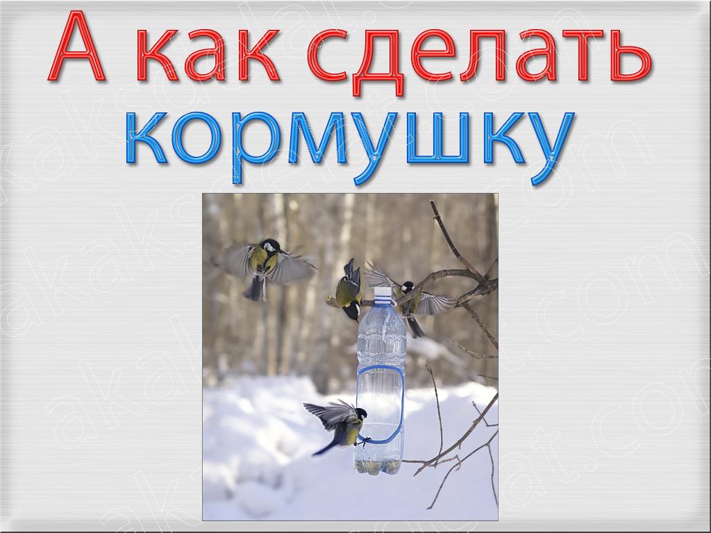 Как сделать кормушку своими руками для птиц