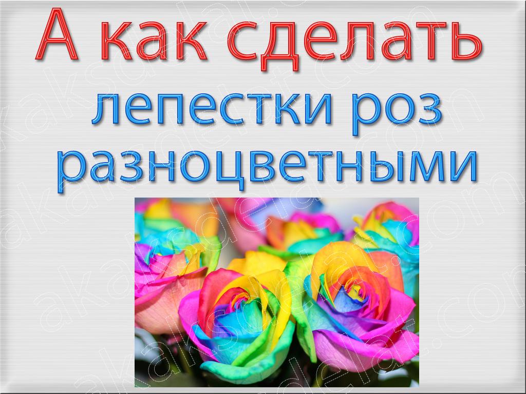 Схема предложения 1 класс примеры школа россии фото 289