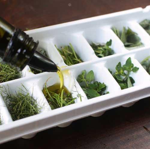 заморозка травяных кубиков