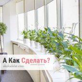 Озеленение офисов живыми цветами