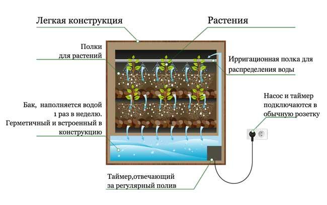 Фитостена устройство полива