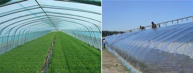 сельскохозяйственное пленочное покрытие