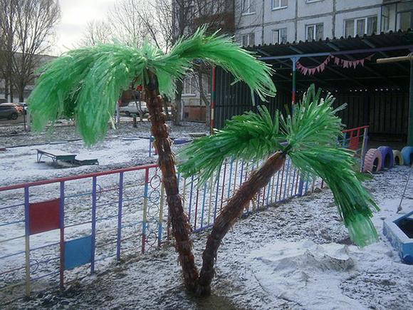 пальма на детской площадке