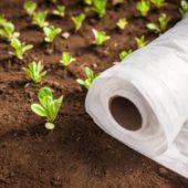 Как правильно применять агроволокно