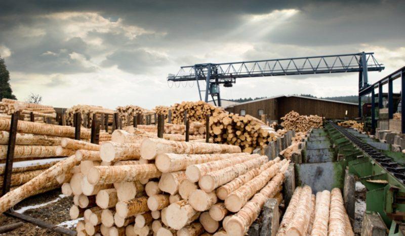 Современная деревообработка